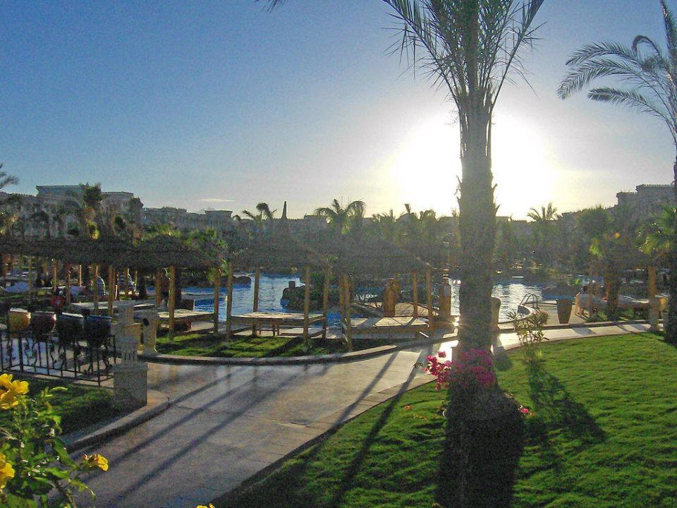 Die wunder schöne Poolanlage Albatros Palace Resort