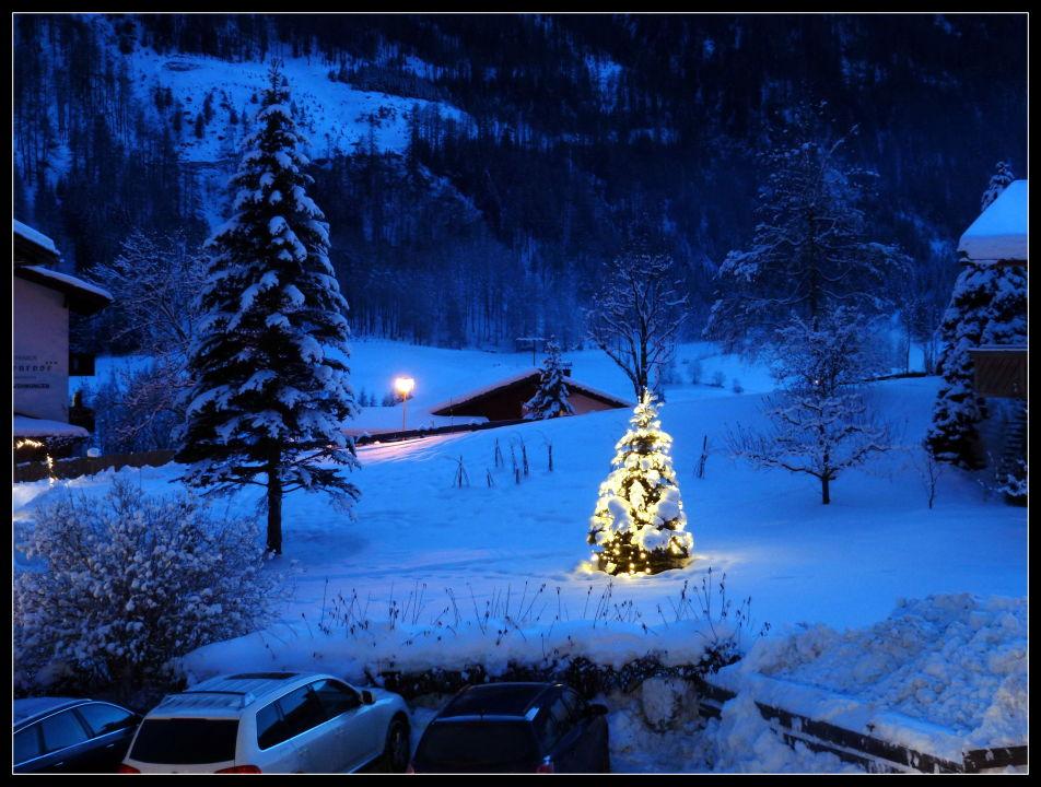 beleuchteter weihnachtsbaum im winter 2013 ferienhaus. Black Bedroom Furniture Sets. Home Design Ideas