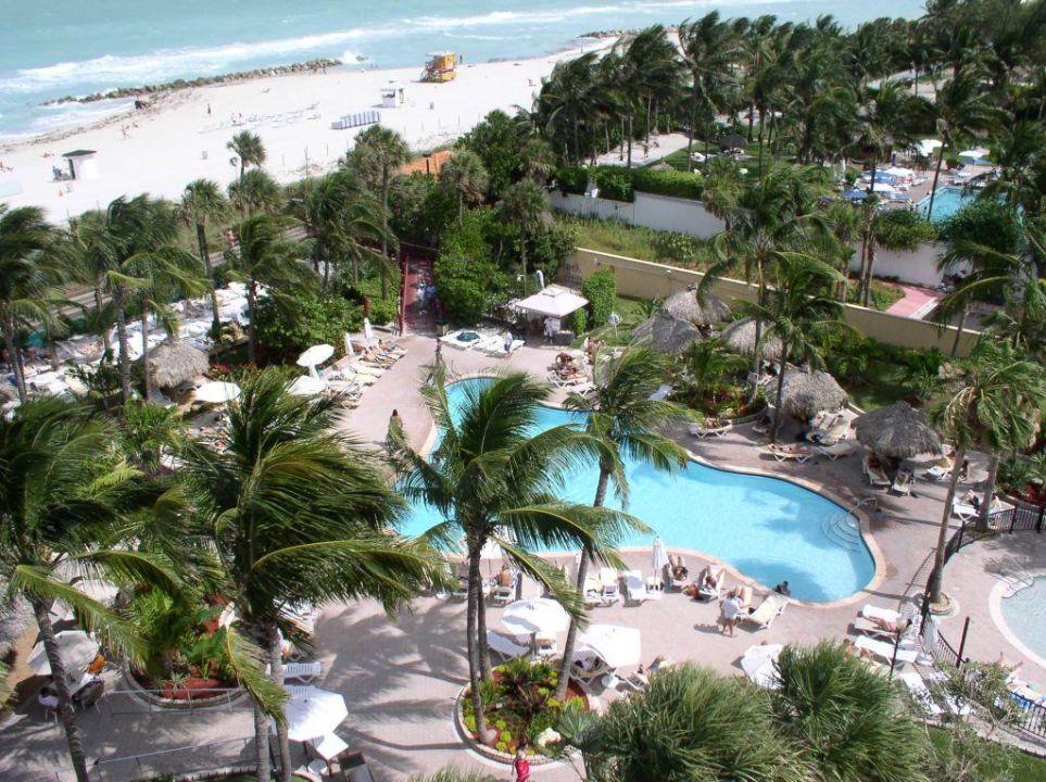 poolbereich riu miami beach hotel riu plaza miami. Black Bedroom Furniture Sets. Home Design Ideas