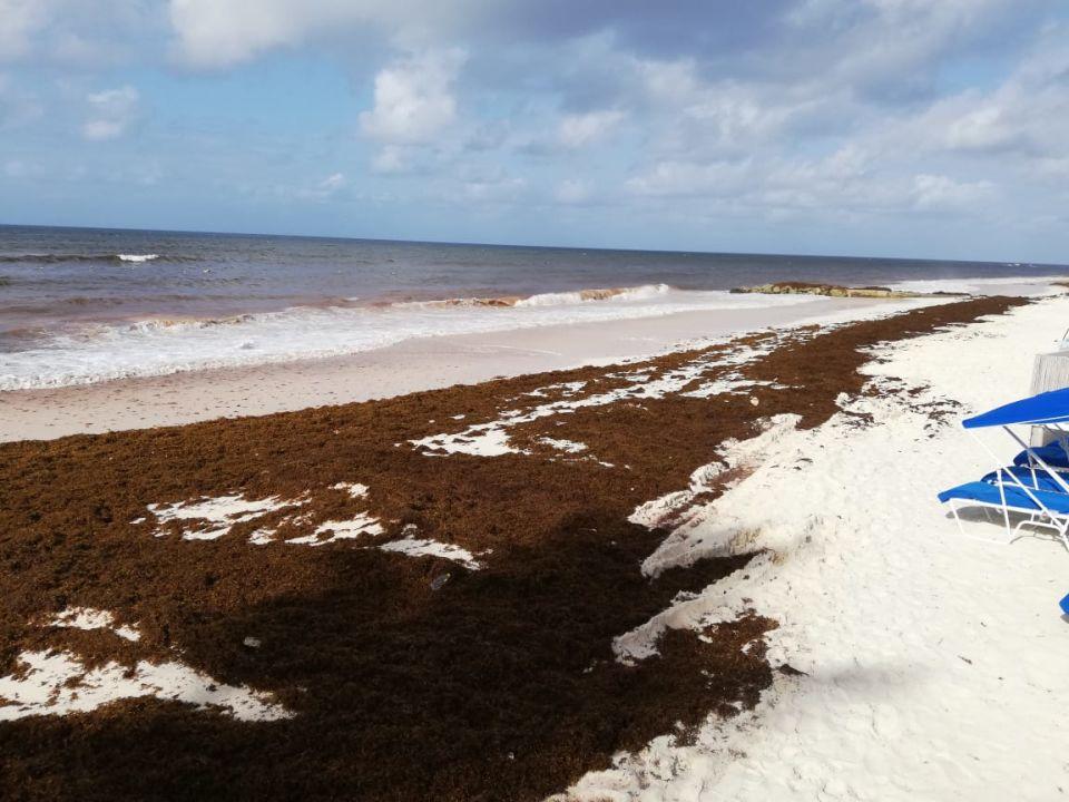 Strand Hotel Sea Breeze Beach