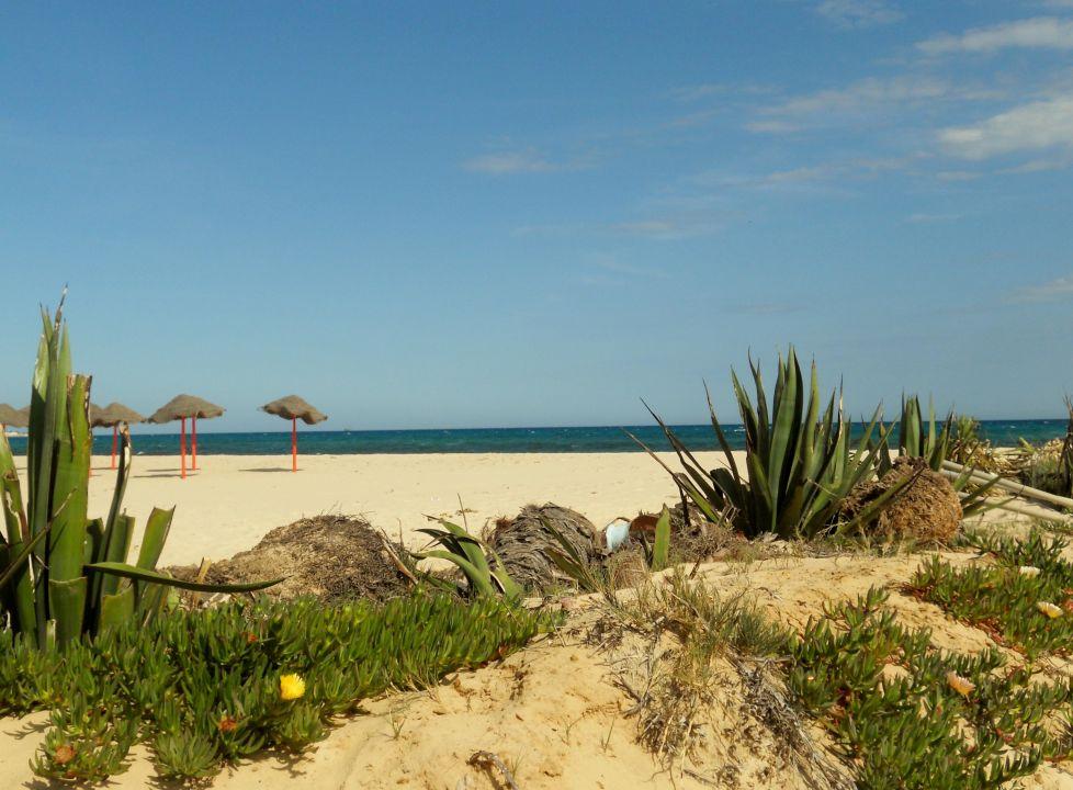 Très belle plage Hotel Paradis Palace
