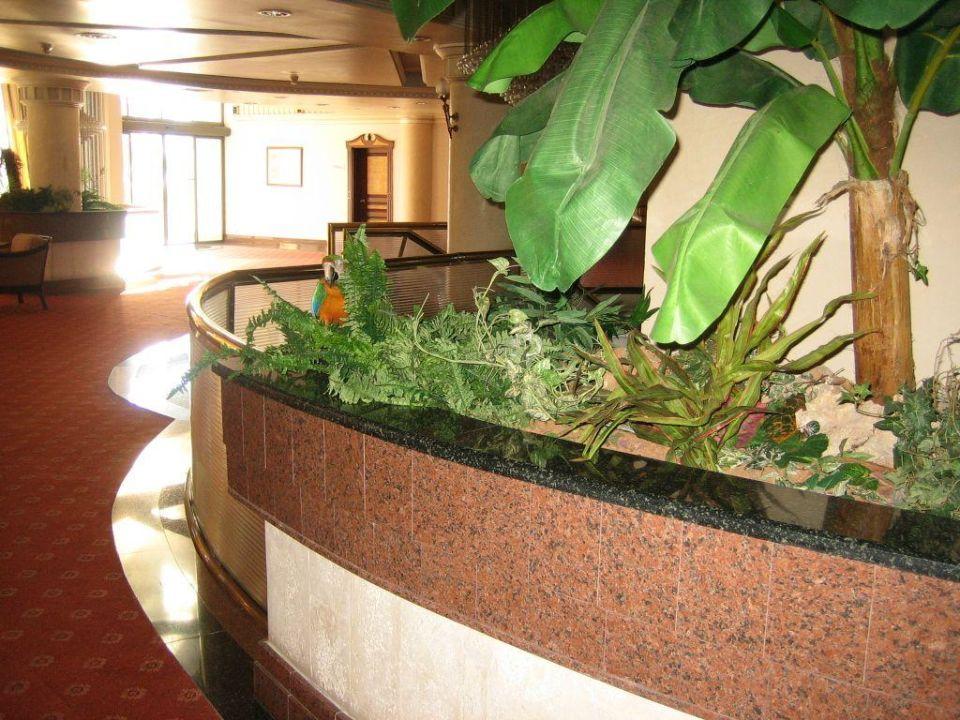 Obere Lobby Crystal Sunrise Queen Luxury Resort & Spa