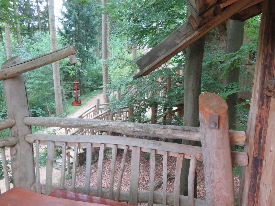 zugang zum baumhaus natur resort tripsdrill baumh user cleebronn holidaycheck baden. Black Bedroom Furniture Sets. Home Design Ideas