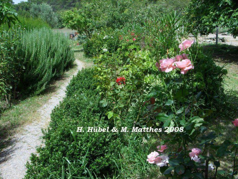 Spaziergang über das Grundstück Finca Caballo Blanco Son Bages
