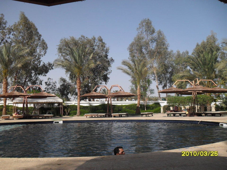 Relaxpool Ghazala Beach