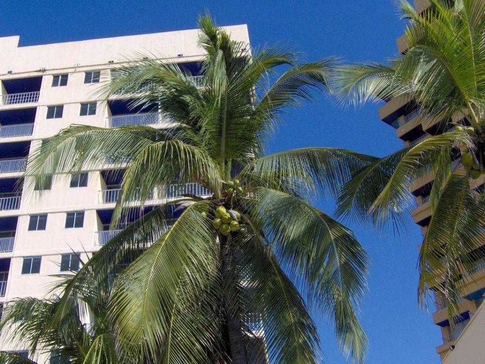 Hotel Hotel Ritz Acapulco