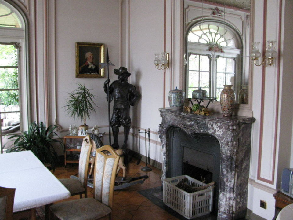 Salon Mit Kamin Villa Altenburg