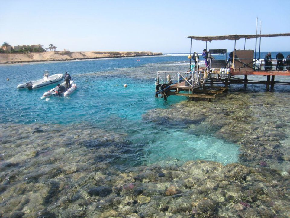 Das Riff... Steigenberger Coraya Beach - Adults only