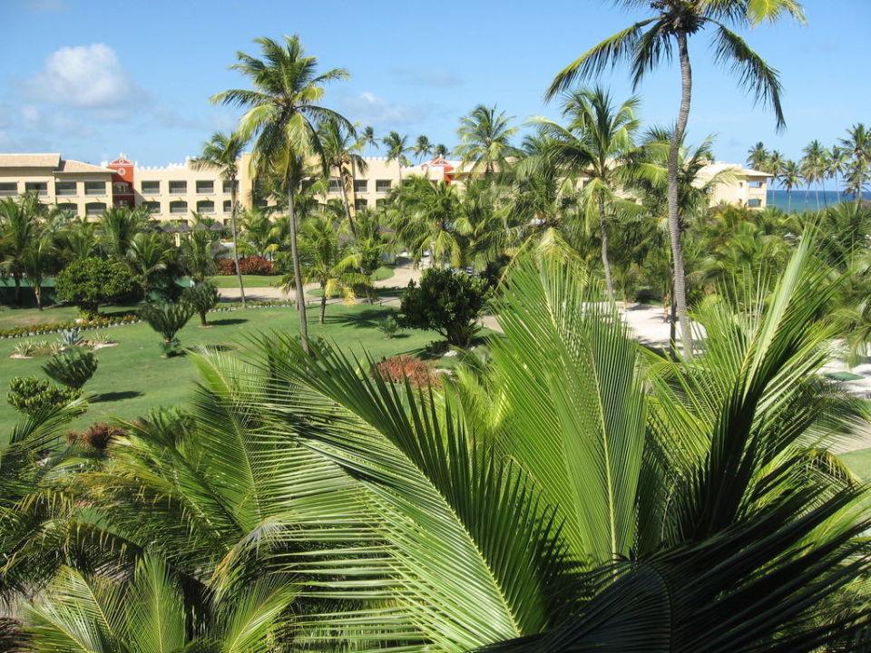 Gartenanlage Ausblick Zimmer Iberostar Bahia