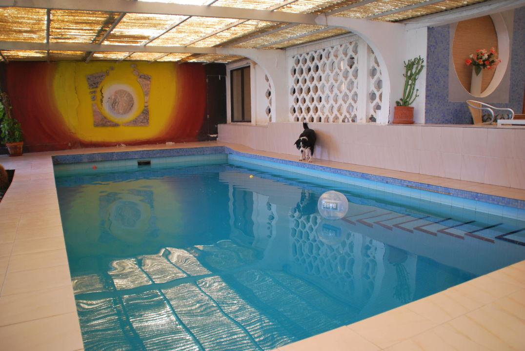 Pool im Wintergarten-Anbau\