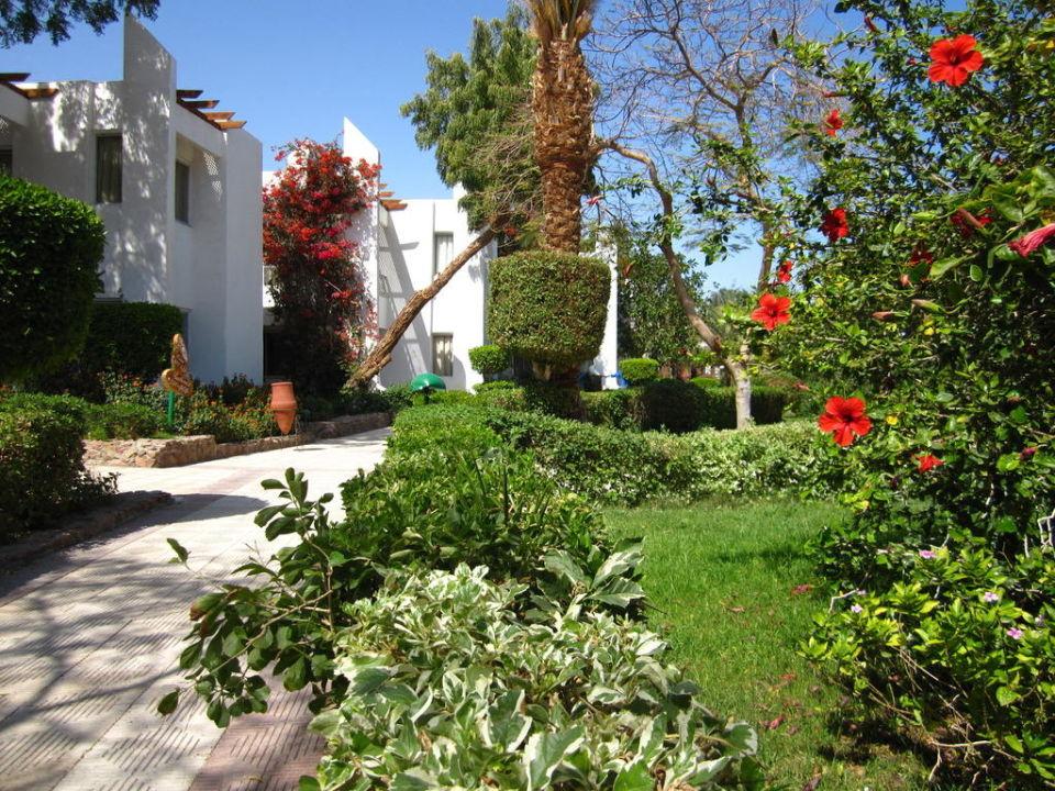 Gartenweg Menaville Safaga