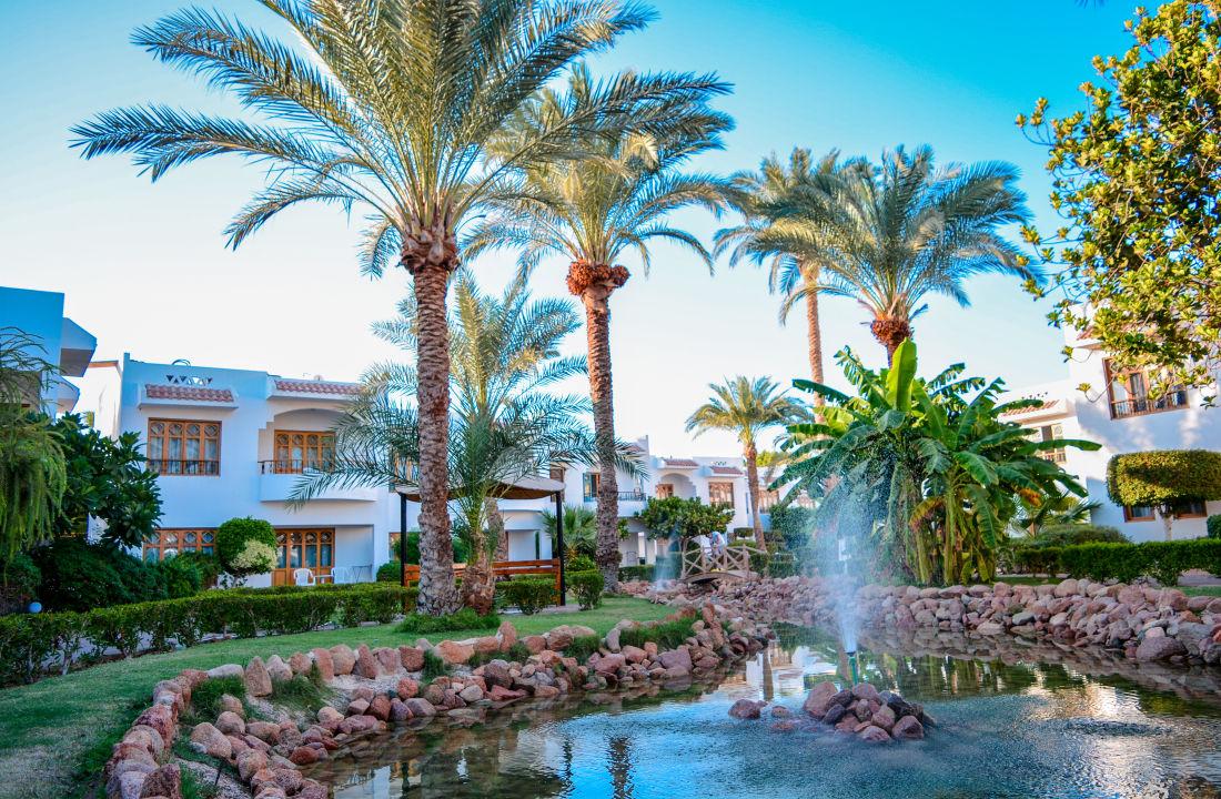 Gartenanlage dive inn resort sharm el sheikh hadabat for Dive inn sharm