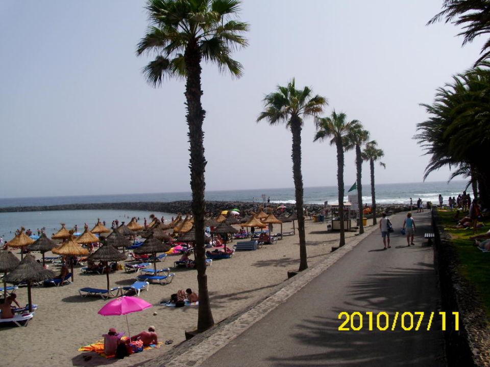 Promenade apartamentos parque santiago 3 playa de las americas holidaycheck teneriffa - Apartamentos parque santiago ...