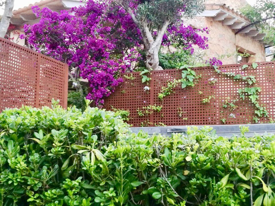 Gartenanlage Landhotel / Finca La Costa