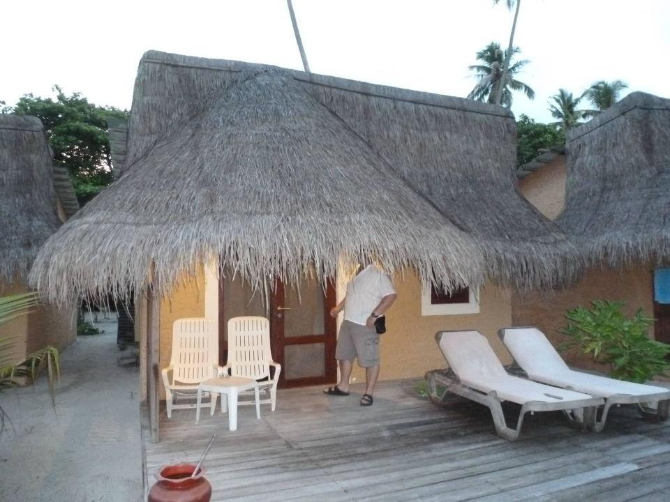 bild verleihnix frische fische zu kuredu island resort. Black Bedroom Furniture Sets. Home Design Ideas