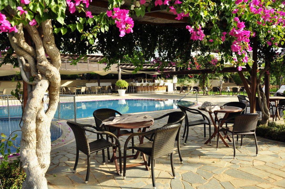 Mittags am Pool Hotel Alion Beach
