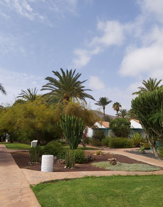Gartenanlage Aldiana Club Fuerteventura