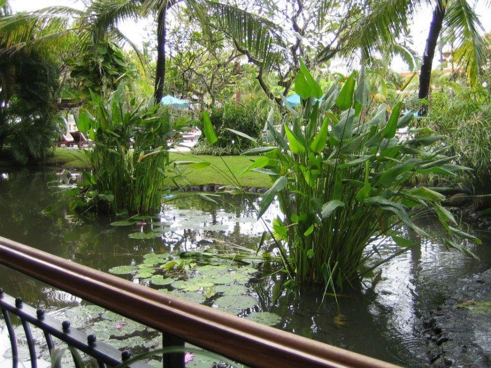 Teichanlage vom Frühstück aus... The Westin Resort Nusa Dua, Bali