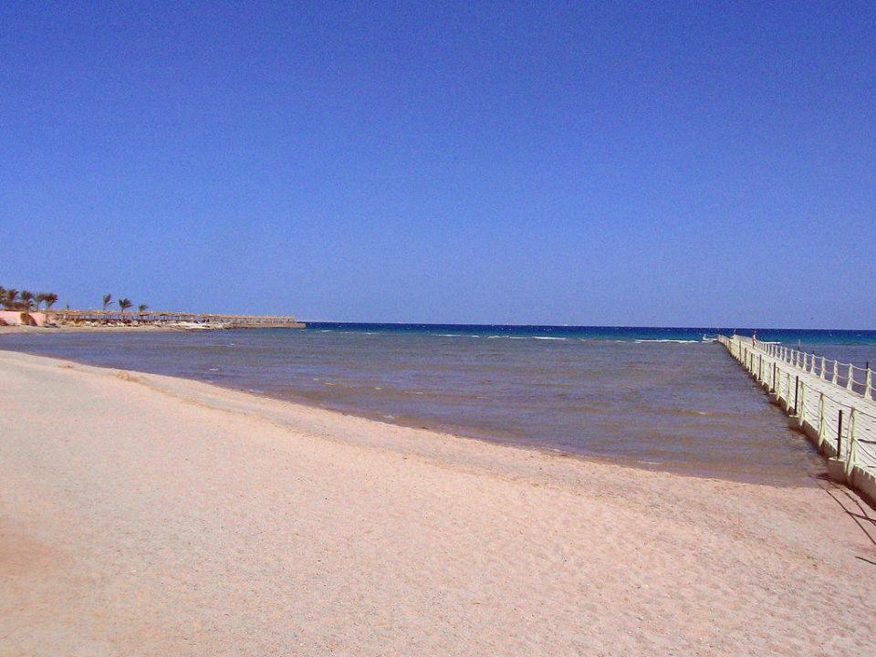 Der Strand mit Steg Albatros Palace Resort