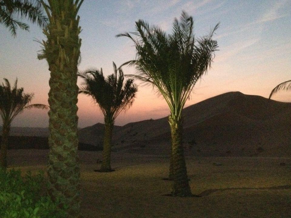 Gartenanlage Hotel Arabian Nights Village