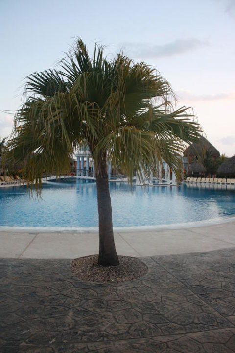 Blick zum Pool Iberostar Selection Varadero