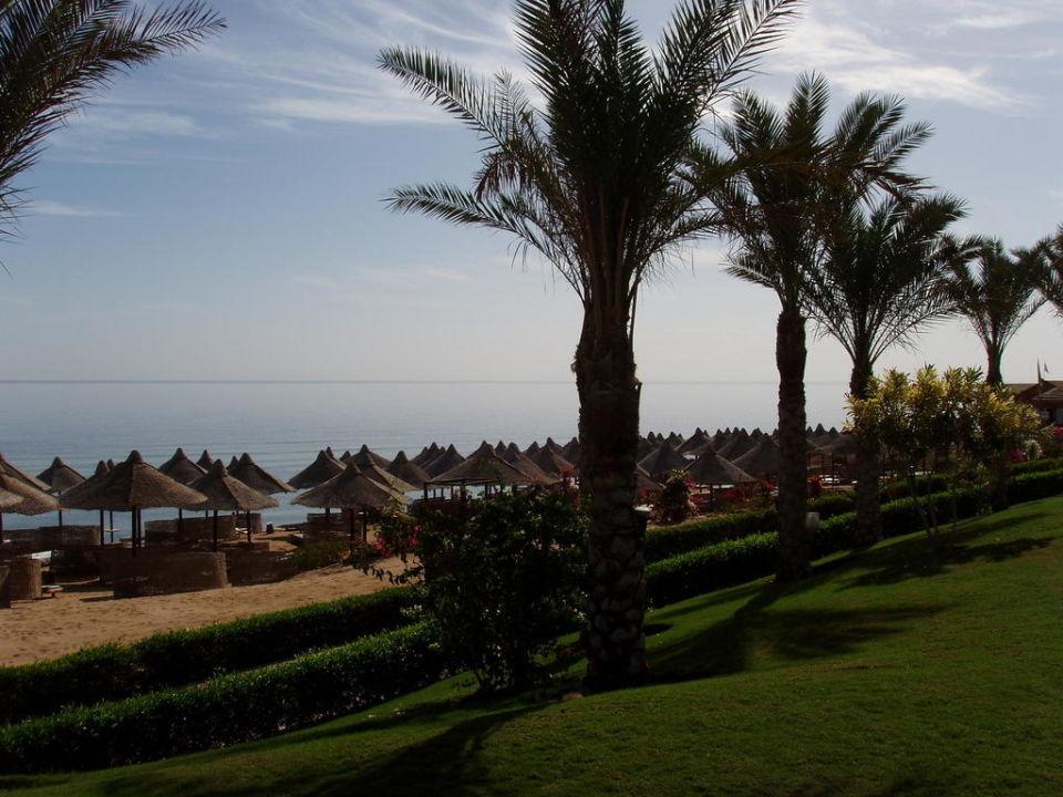 Strand Serenity Makadi Beach