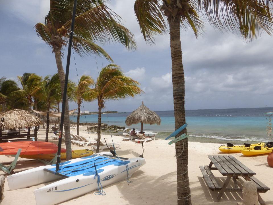 Der Hotelstrand Hotel Plaza Resort Bonaire