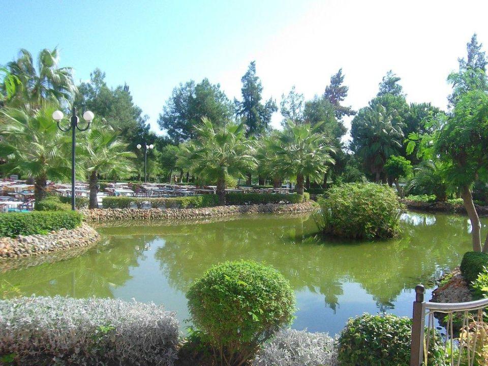 Sehr schöne Gartenanlage mit großem Teich Grand Prestige Hotel & Spa