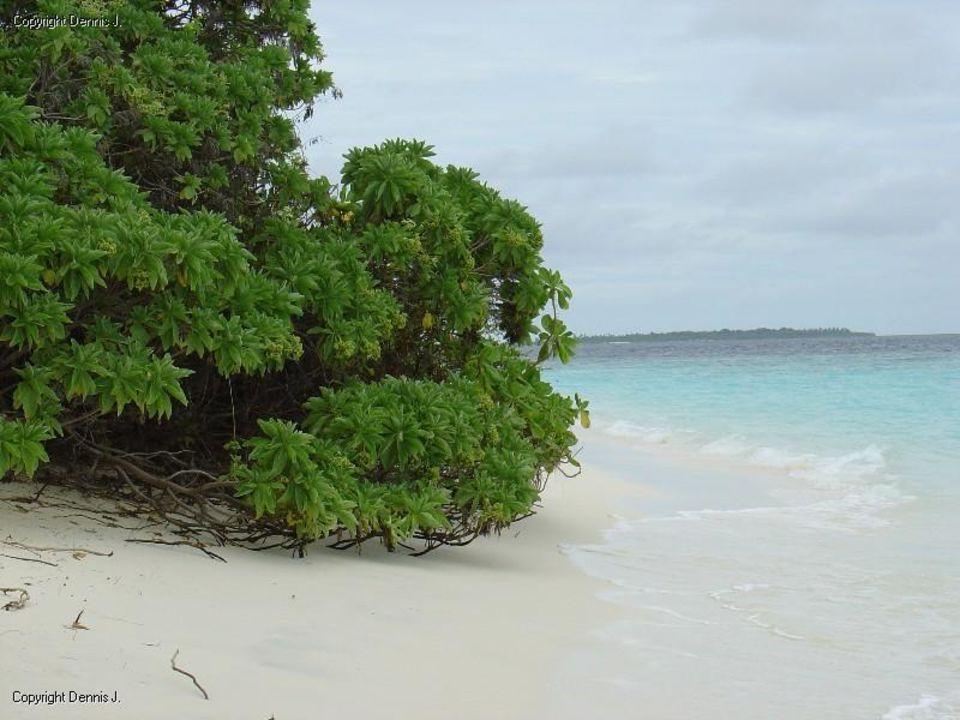 Einmal um die Insel Adaaran Select Meedhupparu Island Resort