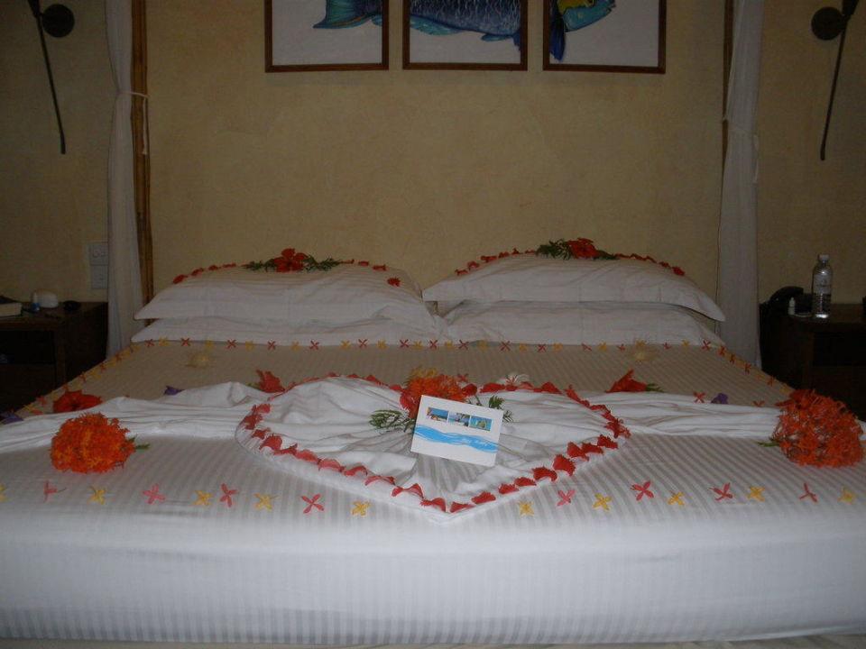 Zum Geburtstag geschmücktes Bett Kuramathi Maldives