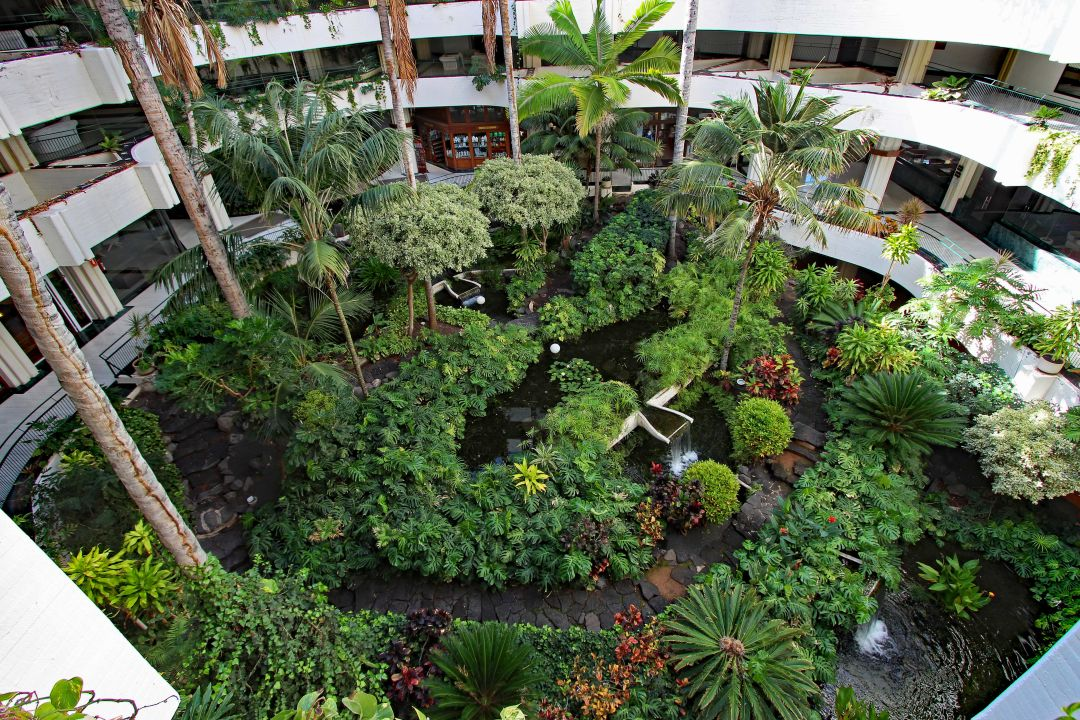 Gartenanlage Melia Salinas