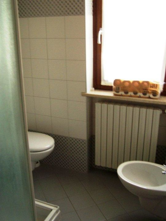bild toilette mit dusche zu appartements residence mirena in tignale. Black Bedroom Furniture Sets. Home Design Ideas