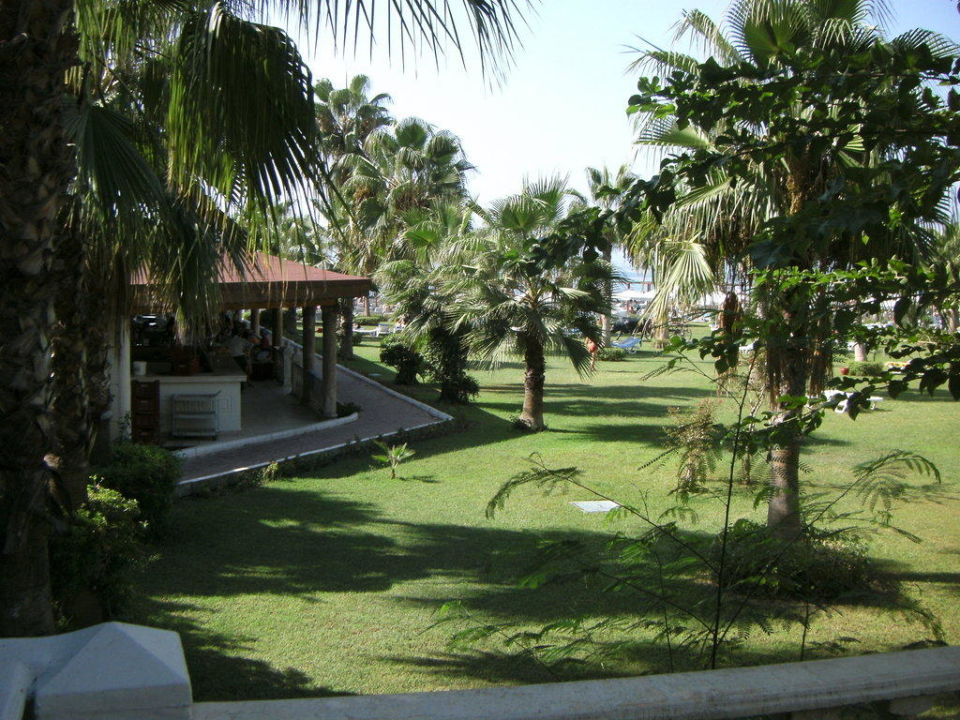 Gartenanlage beim Pool Cesars Resort Side