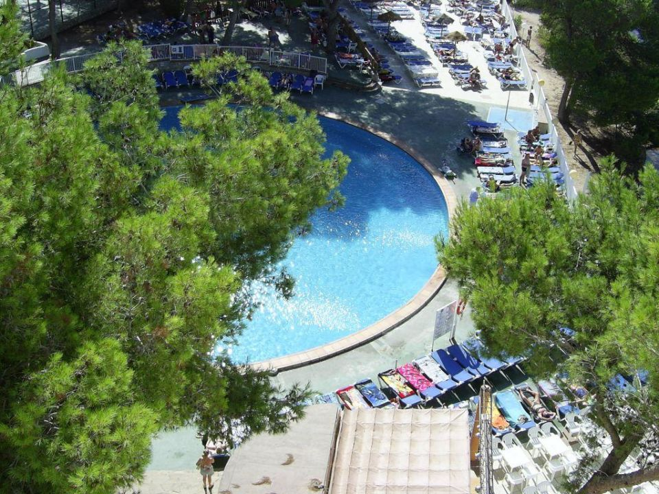 Pool Alua Miami Ibiza