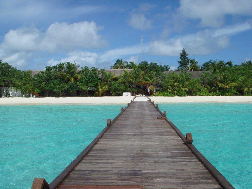 Vom Steg zur Insel Maayafushi Resort