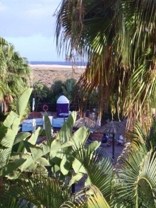 Ausblick vom Balkon IFA Altamarena Hotel