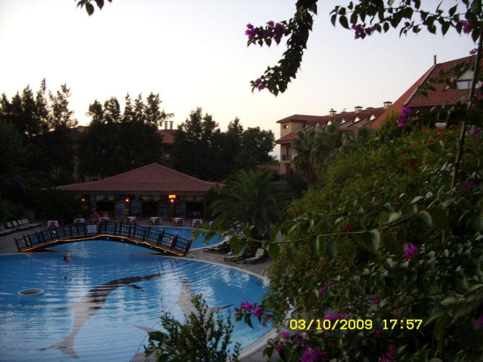 Blick vom Balkon Hotel Alba Resort
