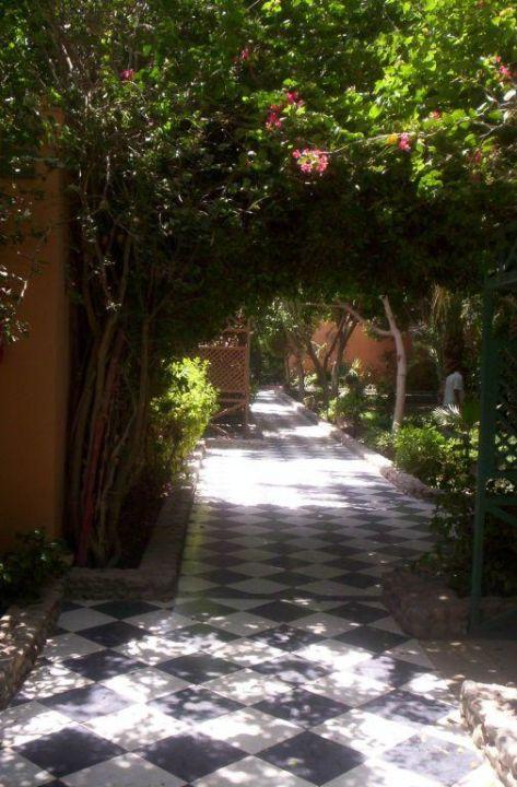 Außenanlage Giftun Azur Resort