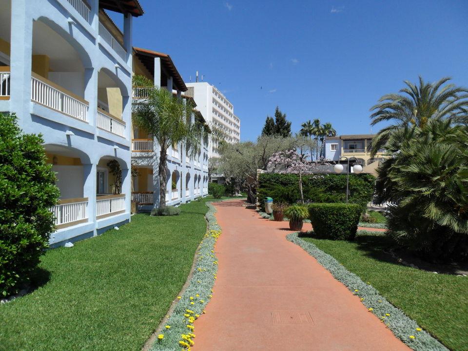 bild f r mallorca 3 sterne hotel sehr gute poolanlage zu hotel alcudia garden in alcudia. Black Bedroom Furniture Sets. Home Design Ideas