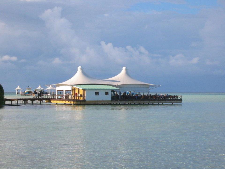 Hervorragende Cocktails von klasse Bar-Männern Cinnamon Hakuraa Huraa Maldives