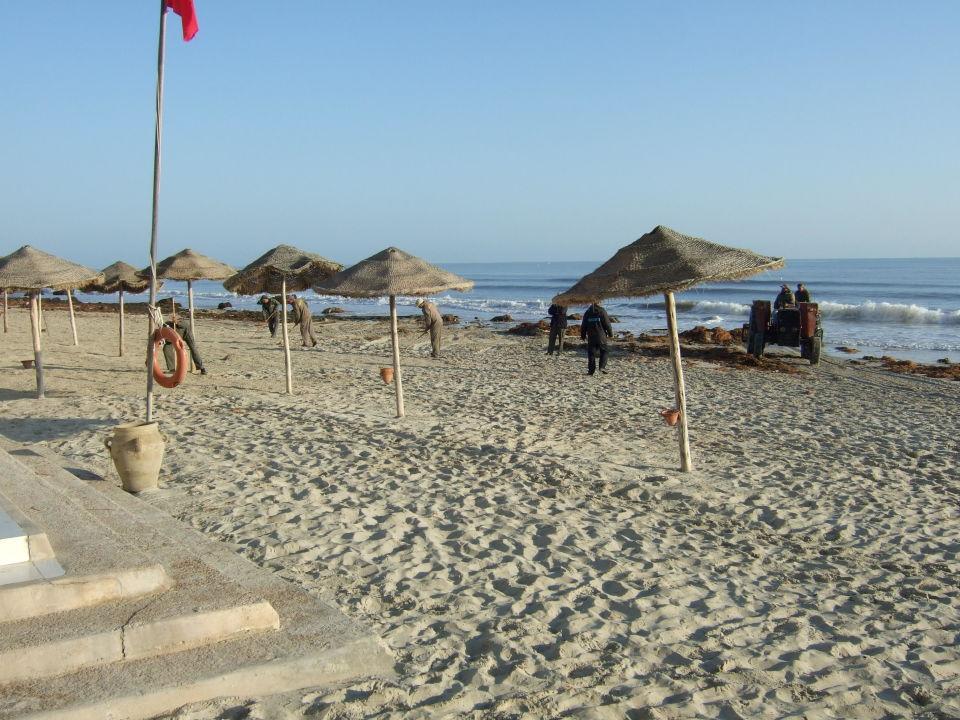 Eierkoch SENTIDO Djerba Beach