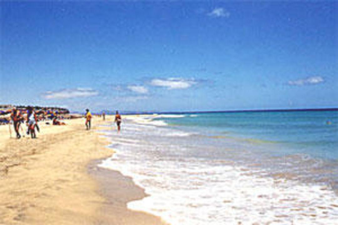 Strand wie in der Karibik Iberostar Fuerteventura Palace - Adults only