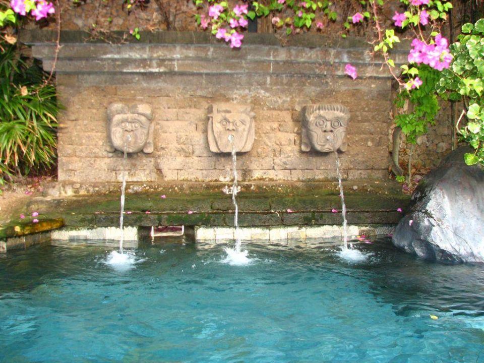 Wasserspiele Im Pool Hotel Poppies