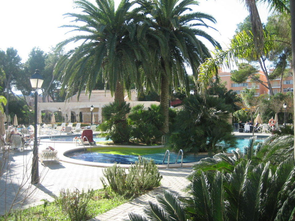 Pool Hotel Riu Bravo