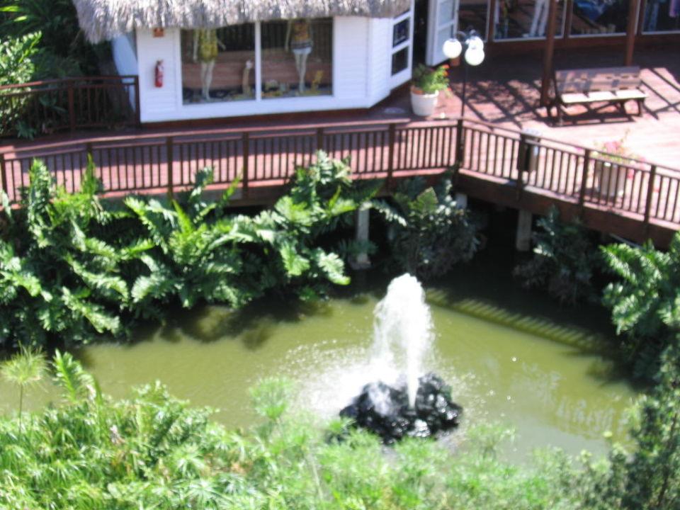 Springbrunnen Hotel Viva Wyndham Dominicus Palace