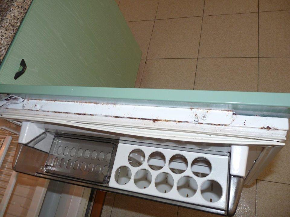 Kühlschrankdichtung : Super dicht kühlschrankdichtung baluga dichtungen online kaufen