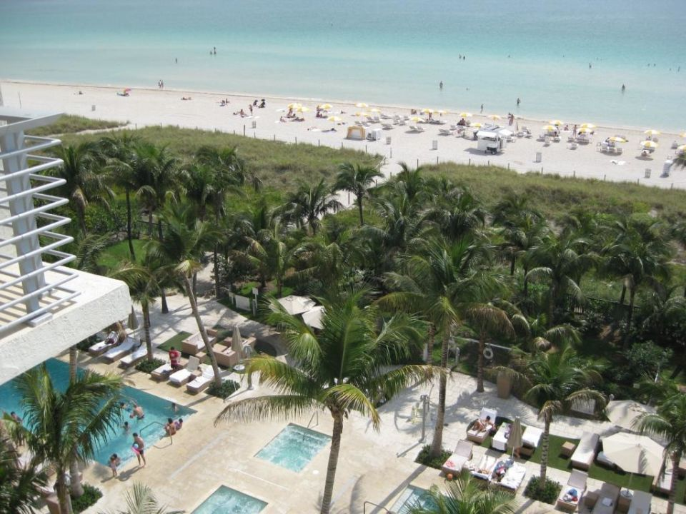 Pool Und Der Hotelstrand Grand Beach Hotel Miami Beach
