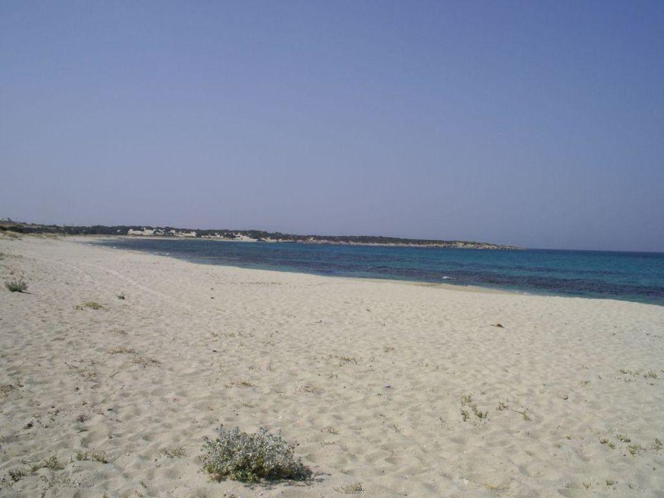 Glifada Plaza Beach Hotel