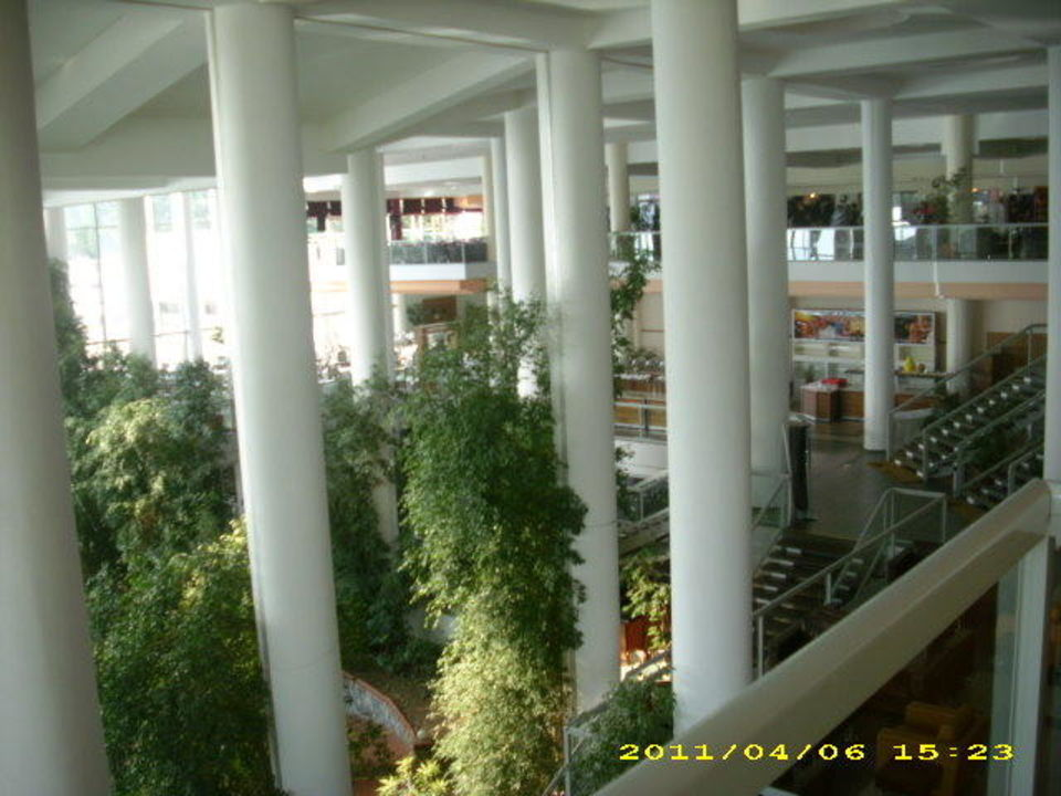Tolle Innenausstattung Hotel Pine Bay Holiday Resort