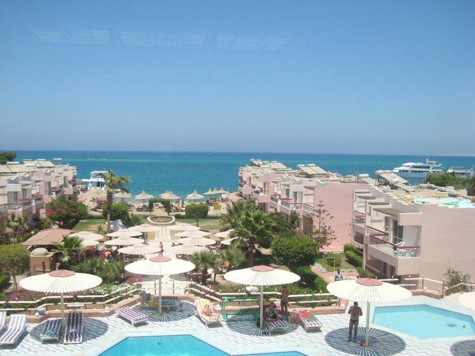 Basen i plaża 2 w 1 Hotel Beirut